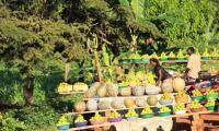 fresh vegetables enroute to kabalega lodge.jpg