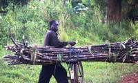 sugar cane hawker enroute to kabalega lodge.jpg